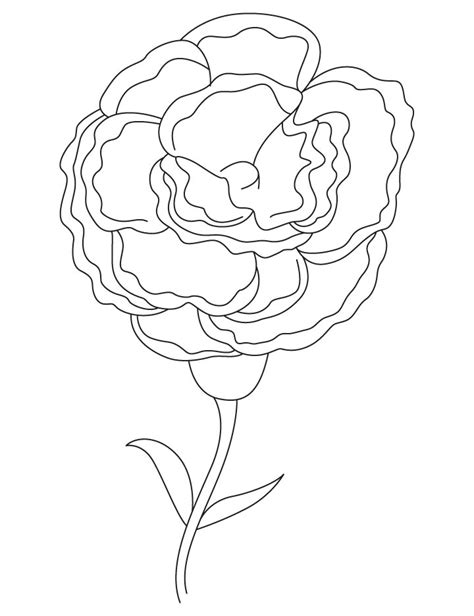 food coloring flower experiment worksheet add color to