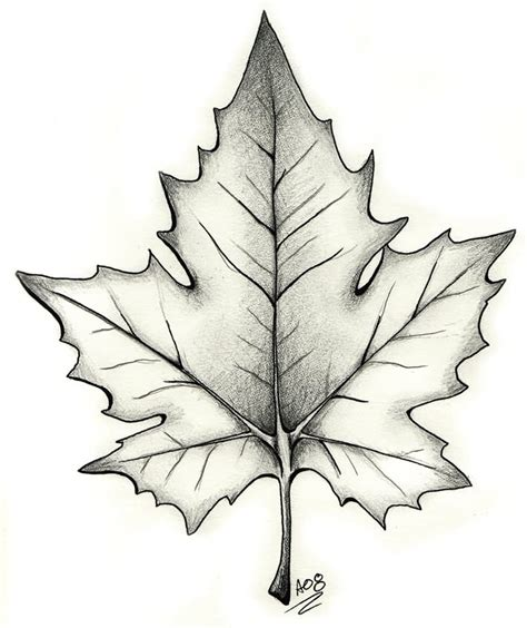 leaf tattoo design black and grey maple leaf design