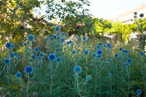 jardines paisajistas jard 237 n laboratorio en segovia de planta paisajistas