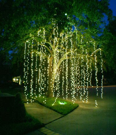 how to make raining lights in a tree fresh ideas for lights wedding event lighting and decor