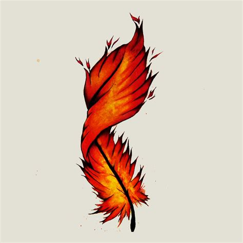 phoenix feather tattoo feather pinteres