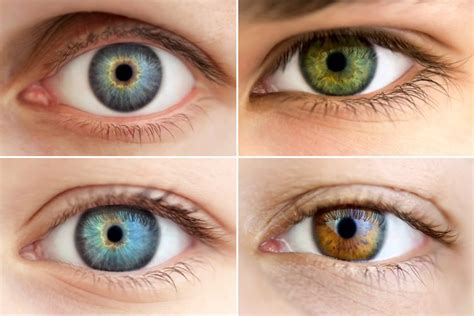 all eye colors all about the human eye color chart