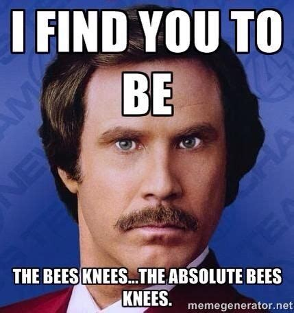 Knee Surgery Meme - the knee prosthesis the different types bees knees and