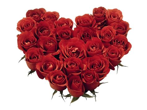 pictures of hearts and roses cool wallpapers wallpaper