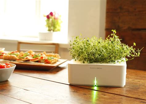 smart herb garden grows herbs and plants with smart herb garden in your