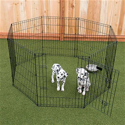 dog houses at costco lucky dog 36 quot dog exercise pen w stakes