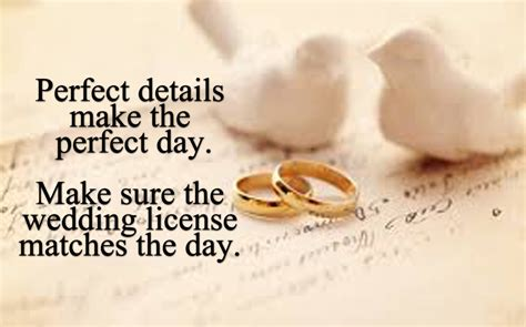 Wedding License by Requirements For Officiating A Wedding In Florida Mini