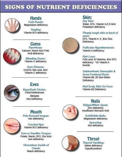 nutrient deficiency 50 best images about nutrient deficiencies on health charts and failure
