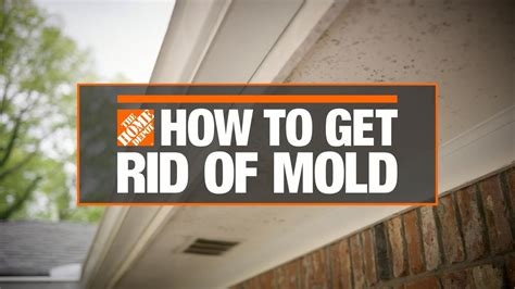 how to get rid of mold bath how to videos and tips at