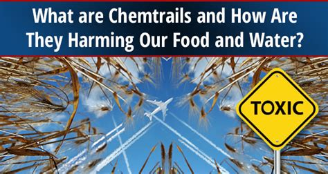 How To Detox From Chemtrails by What Are Chemtrails And How Are They Harming Our Food And