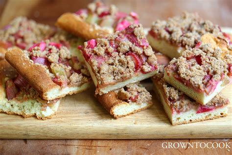 rhabarba kuchen rhubarb kuchen with spiced up streusel grown to cook
