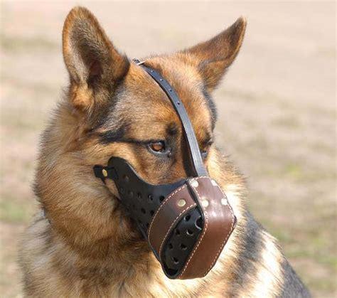 leather muzzle leather muzzle dondi plus style for german shepherd m55 1063 leather muzzle
