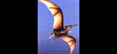 How To Make A Paper Flying Dinosaur - how to make an origami flying pterodactyl dinosaur for