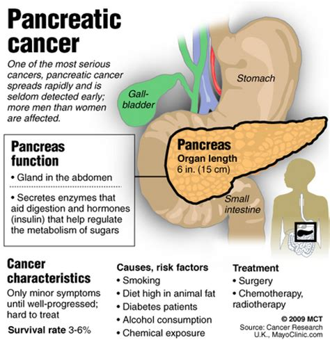 stomac pain symptoms in tamil 7 warning signs of pancreatic cancer