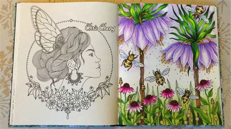 libro daydreams coloring book daydream dagdr 246 mmar coloring book the secret life of bees