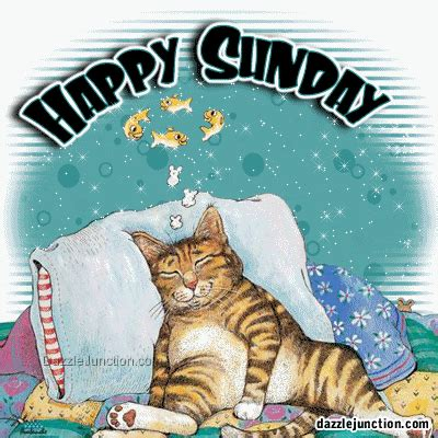 A Cat On A Sunday by Happy Sunday Picture Glitter Sunday Graphics99