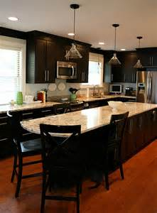 Kitchens With Black Cabinets Pictures
