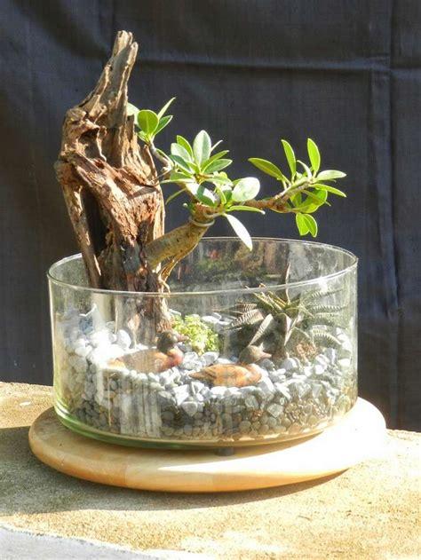 Impressionnant Avoir Des Canards Dans Son Jardin #7: Terrarium-bonsai-diy-jardin-miniature-interieur.jpg