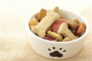healthy and yummy dog treats to make