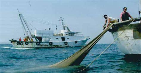 marche login imprese abruzzo contributi alle imprese di pesca