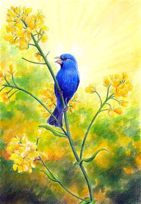 singing bluebird tattoo design