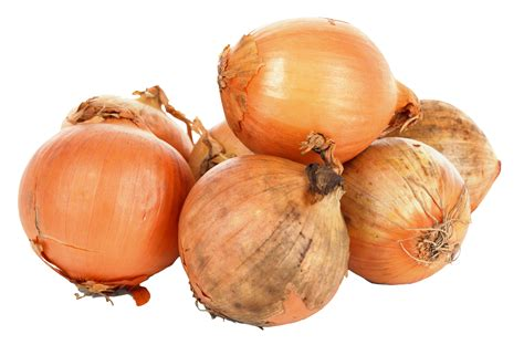 Is Onion A Root Vegetable - onions png image pngpix