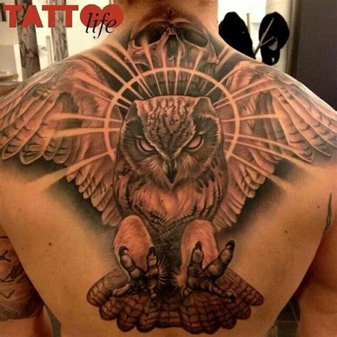 tattoo owl back skull owl tattoo back piece tattoos and sketches