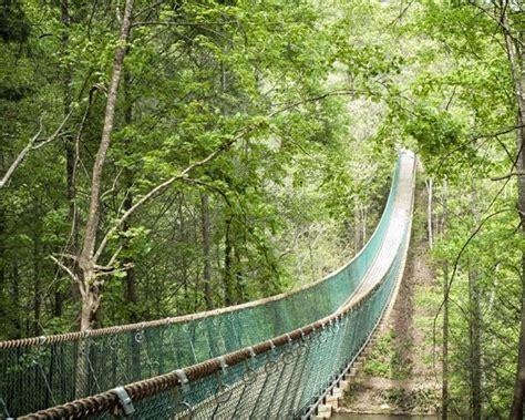 foxfire mountain swinging bridge the longest swinging bridge in the us is in tennessee