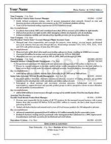 example of a resume executive summary - Executive Summary For Resume