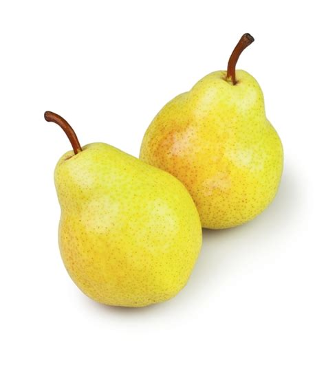 fruit yellow yellow colored fruits www pixshark images