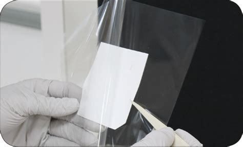 western blot cassette solutions for protein characterization chemiluminescent