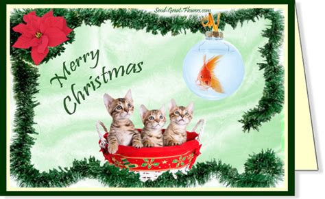 printable christmas cards cats 7 best images of humor free printable cards free funny