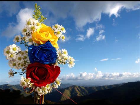 imagenes tricolor venezuela el mapa de venezuela revela a la reina del sur