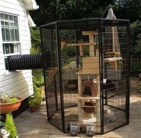 25 best ideas about outdoor cat enclosure on