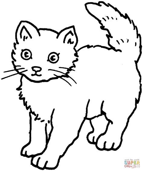 Picture Of A Cat To Color by Cat 25 Coloring Page Free Printable Coloring Pages