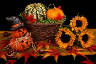 pictures halloween decorations halloween decoration in fall free stock photo public