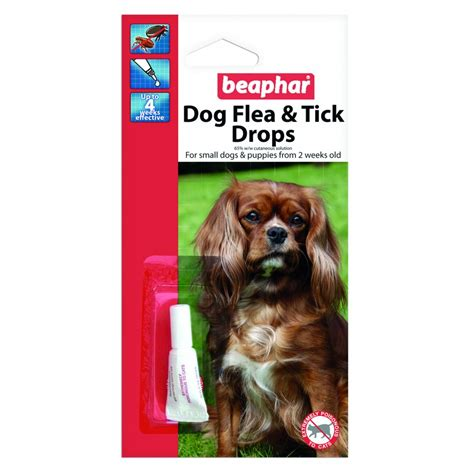 flea protection for dogs buy beaphar flea drops 4 week protection small dogs