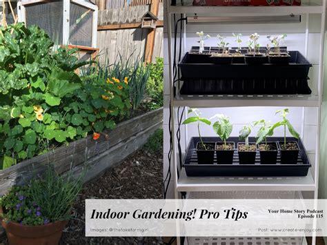 pro tips  indoor gardening    images