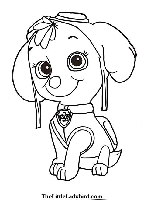 paw patrol spring coloring pages skye paw patrol coloring pages bloodbrothers me
