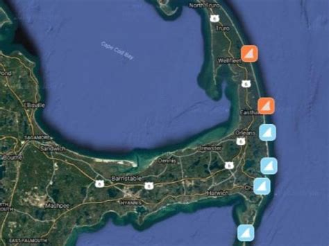 chatham cape cod sharks great white sharks on cape cod 7 sightings and counting