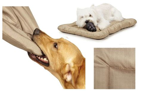 chew resistant dog beds heavy duty chew resistant crate mats for dogs reinforced