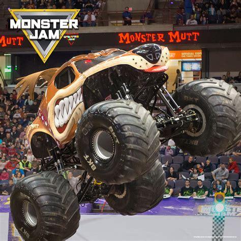 grave digger monster truck merchandise 100 grave digger monster truck merchandise doing
