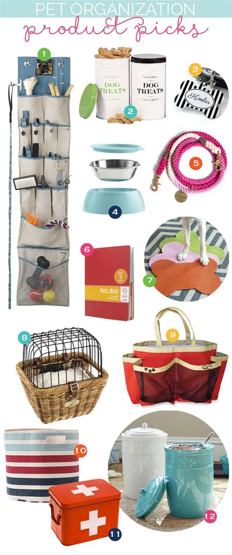 puppy stuff best 25 pet supplies ideas on