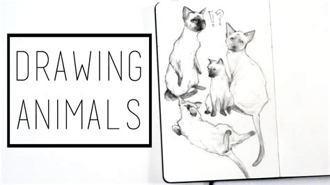 sketchbook how to fill drawing animals 183 30 ways to fill a sketchbook