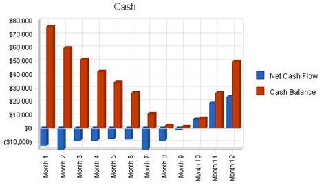 sle cash flow for a restaurant organic restaurant business plan sle financial plan