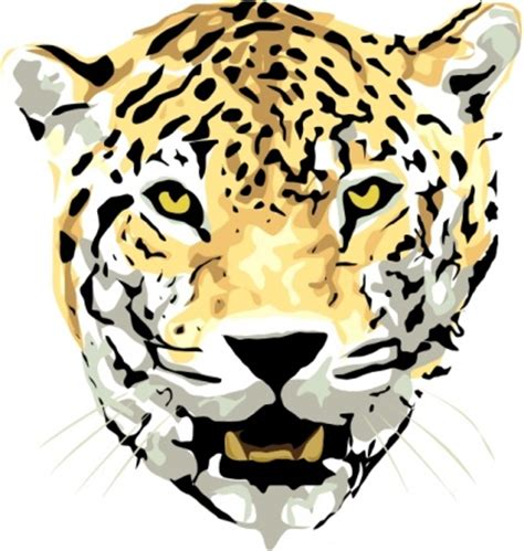 imagenes animadas de un jaguar cabeza gato esquema dibujo cara de dibujos animados jaguar