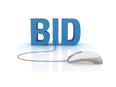 bid electronics auction pre approval net