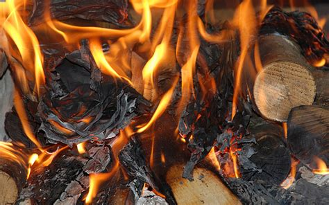 How To Make Paper Logs For Burning - flames coals wood burn paper photography wallpaper