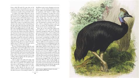 on the origin of species illustrated books galleon on the origin of species the illustrated edition