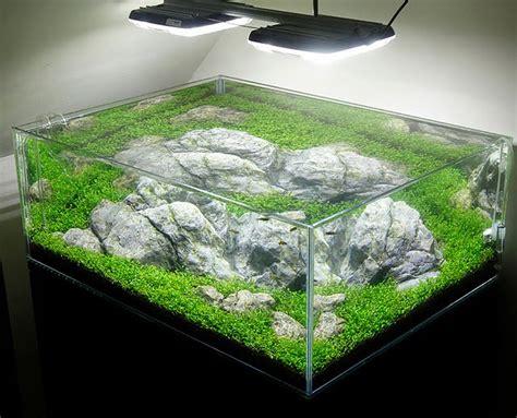 aquascape lighting aquascape aquarium lighting images